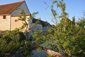 Tartigousse, Penzióny  Saint-Aignan - big - 9