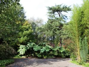 Reedpool, Dovolenkové domy  Ruiselede - big - 36