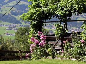 Wasserfall, Ferienhäuser  Hart im Zillertal - big - 13