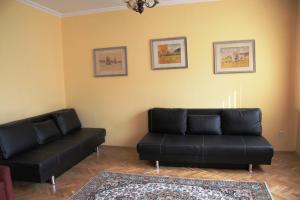 Apartment Ljuben Karavelov, Appartamenti  Sofia - big - 11