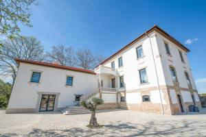 Borralha Guest House, Bed & Breakfasts  Vila Real - big - 32