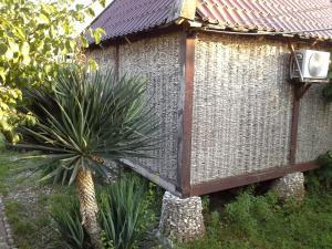 Кемпинг Бамбора - фото 9