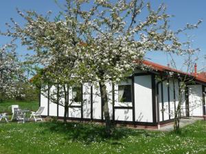 Holiday home Feriendorf Altes Land 1