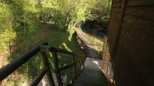 Japodska Treehouse - фото 14