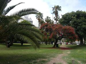 Altos de Biarritz, Apartments  Montevideo - big - 32