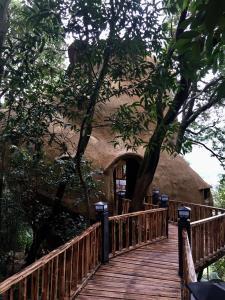 Jiuzhou Stage Yingde Tianmengou Resort, Rezorty  Yingde - big - 16
