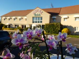 Hotel Altina
