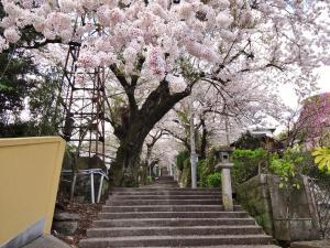 Атами - Ryokan Izuna