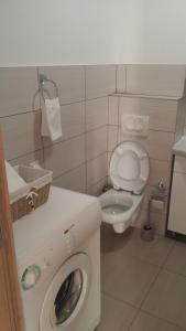 Apartman Narcis - фото 11