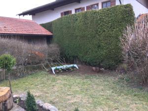 Evi's Seehäusl, Ferienhäuser  Übersee - big - 5