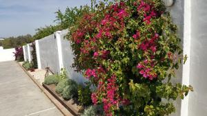 La Posada del Duende, Penzióny  Arcos de la Frontera - big - 55