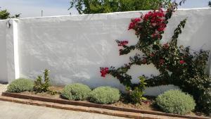 La Posada del Duende, Penzióny  Arcos de la Frontera - big - 52