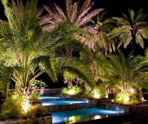 Villa Oasis - , , Mauritius