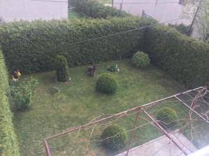 Apartman Anita, Apartmány  Livno - big - 15