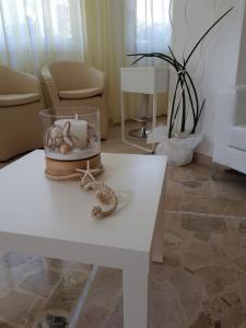 Hotel Solemare, Отели  Чезенатико - big - 35