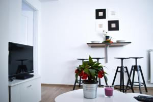 Upper town apartment Nera, Apartments  Zagreb - big - 4