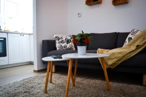 Upper town apartment Nera, Apartments  Zagreb - big - 1