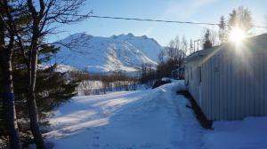 Ersfjord Mountain Cottage