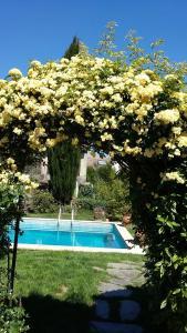 Casa da Quinta De S. Martinho, Pensionen  Vila Real - big - 37