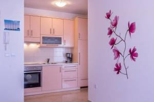 Apartments Marich, Appartamenti  Medulin - big - 10