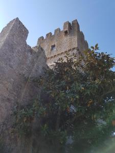 La Torre della Signoria