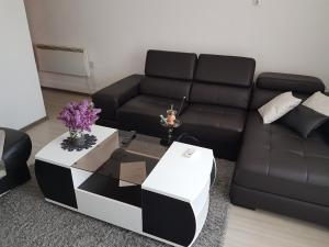Briga Apartment, Apartments  Sarajevo - big - 72
