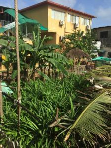 China Town Guest House, Отели  Freetown - big - 13