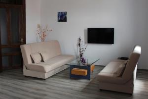 Apartment Seno - фото 11