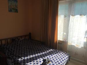 Apartment on Ruzheynaya