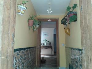 Casa Casco Historico, Case di campagna  Vejer de la Frontera - big - 6