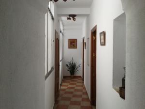 Casa Casco Historico, Case di campagna  Vejer de la Frontera - big - 8