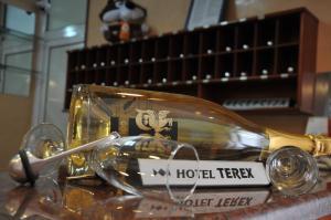 Hotel Terex