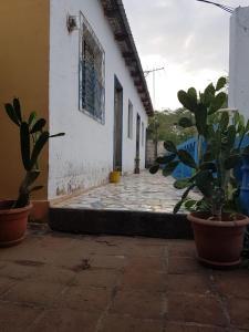 Ein bild von Restaurante y Casa de Huespedes Veleros