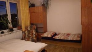Ubytování u Dolanských, Affittacamere  Cesky Krumlov - big - 3