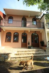 Apartments Olga