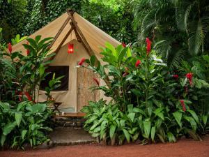 Rodavento Natural, Lodges  Jalcomulco - big - 11