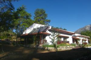 Calm Life Cottages