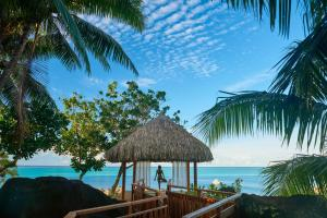 Conrad Bora Bora Nui, Курортные отели  Бора-Бора - big - 55