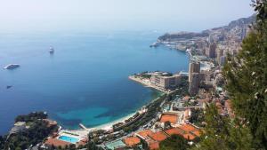 obrázek - Monte Carlo Center 3