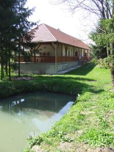 Öreg Bence Háza, Apartments  Füzérkomlós - big - 7