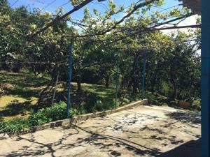 Гостевой дом Мандариновый сад - фото 9