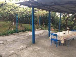 Гостевой дом Мандариновый сад - фото 6