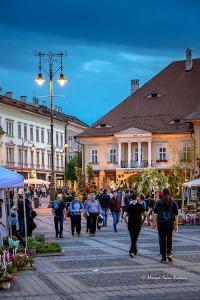 Studio Pia?a Mare Sibiu