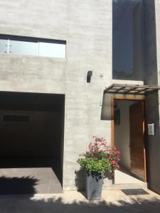 Madre Natura, Apartments  Asuncion - big - 5