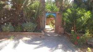 Camping Auberge Aain Nakhla, Хостелы  Guelmim - big - 38
