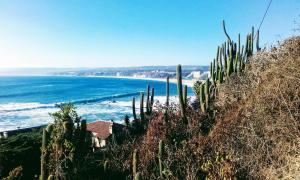 Hostal La Candelaria, Bed and Breakfasts  Algarrobo - big - 26