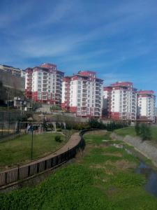 Vale Apartment