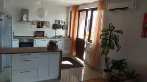 Apartman Ammar Sarajevo - фото 2