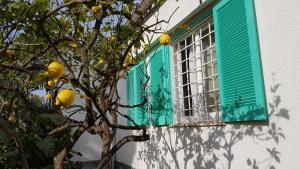 obrázek - Villa Rita
