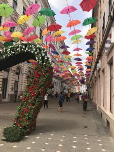 Timisoara Central Hostel, Hostels  Timişoara - big - 64